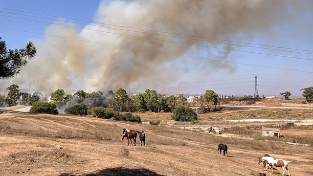 שריפה ליד קיבוץ ניר עם כתוצאה מעפיפון תבערה (צילום: גל גולצמן)