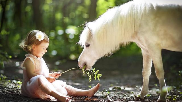 צילומי ילדים וסוסים (צילום: דפנה בן נון)