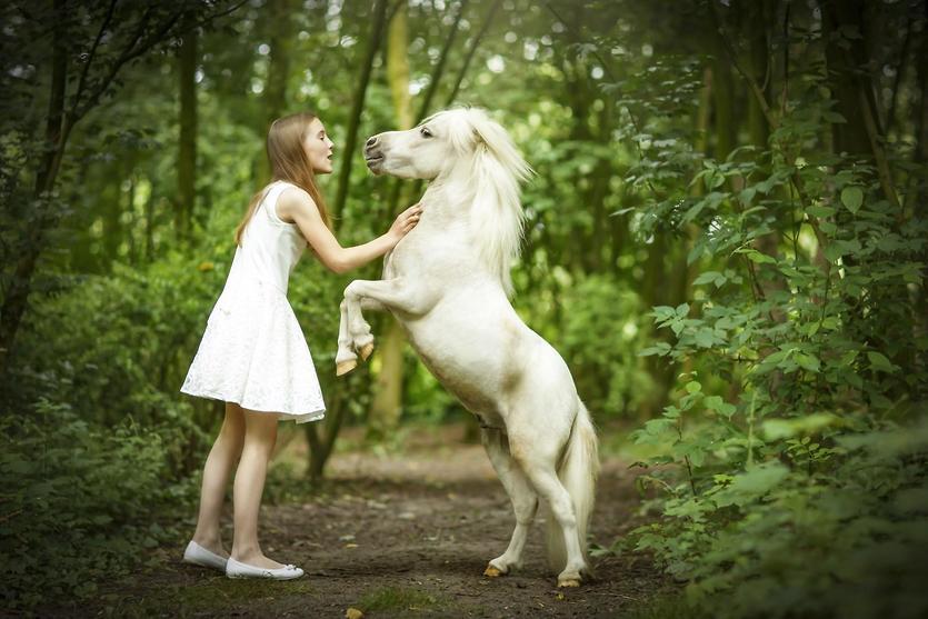 הסוס מקשיב רק לה (צילום: דפנה בן נון)
