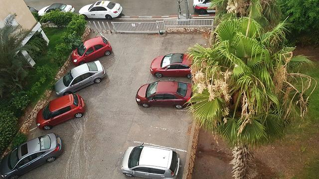 גשם בתל אביב (צילום: סער הס)