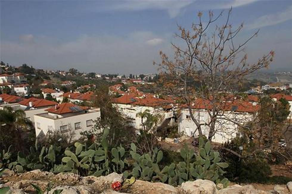 שכונת מול היקב זכרון יעקב (צילום: עידו ארז)