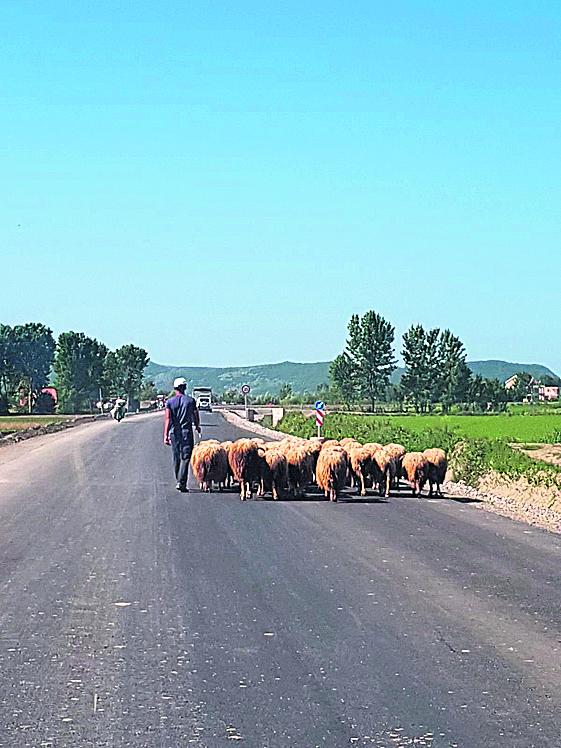 בדרכים הכפריות. ארץ אירופאית לכל דבר