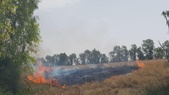 Incendie au Conseil régional d'Eshkol (Photo: Conseil régional d'Eshkol)