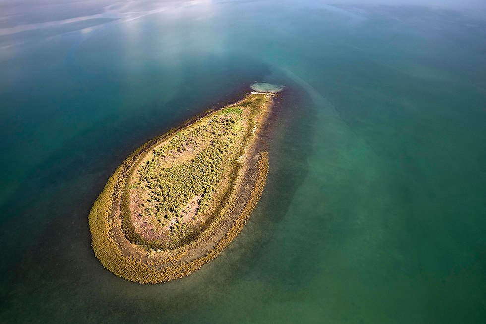 Expanding island in the middle of the Kinneret  (Photo:EPA)