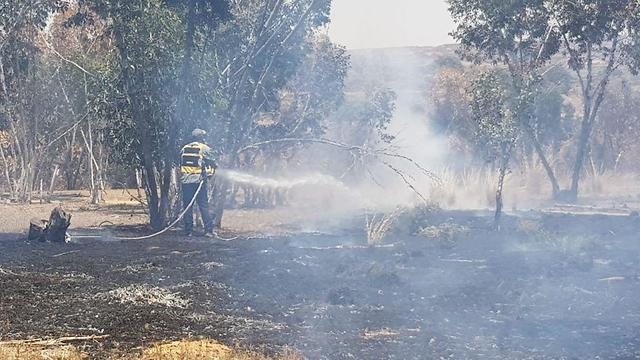 3 Fires break out in western Negev amid incendiary kites   (Photo: KKL)