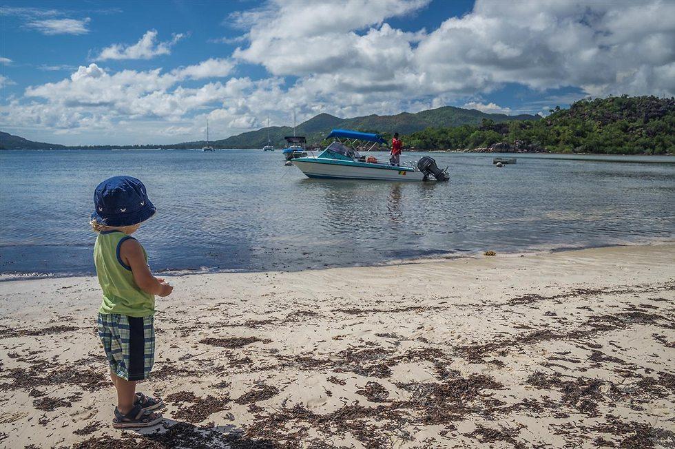 איי סיישל (צילום: איתמר קוטלר)