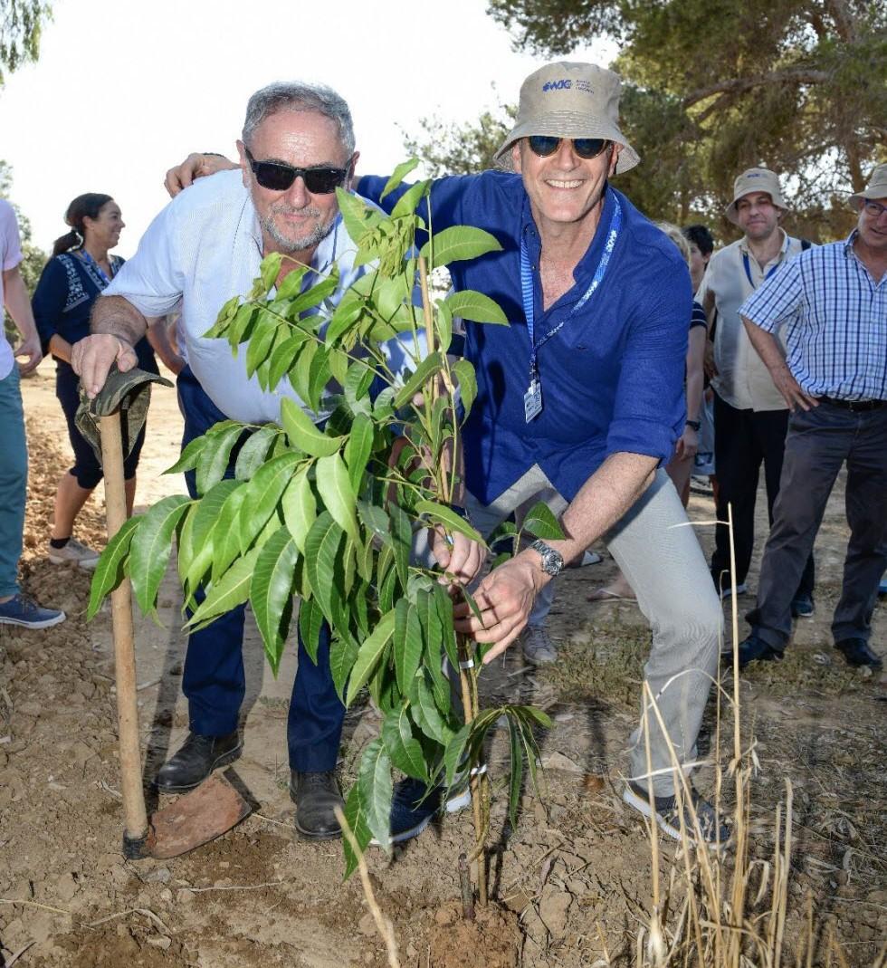 רוברט זינגר, מנכ״ל הקונגרס היהודי, ועזרה כהן, מנכ״ל הקהילה היהודית בפנמה, נוטעים עץ בעוטף עזה. (צילום: שחר עזרן)