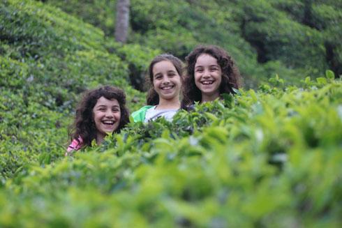 יובל, עופרי ותמר, בטיול בין שדות התה ליד העיירה מונאר (צילום: אירית נצר קאופמן)