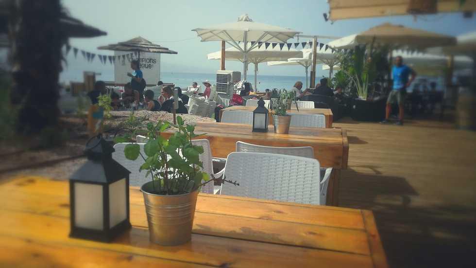 מסעדות חוף (צילום: יח