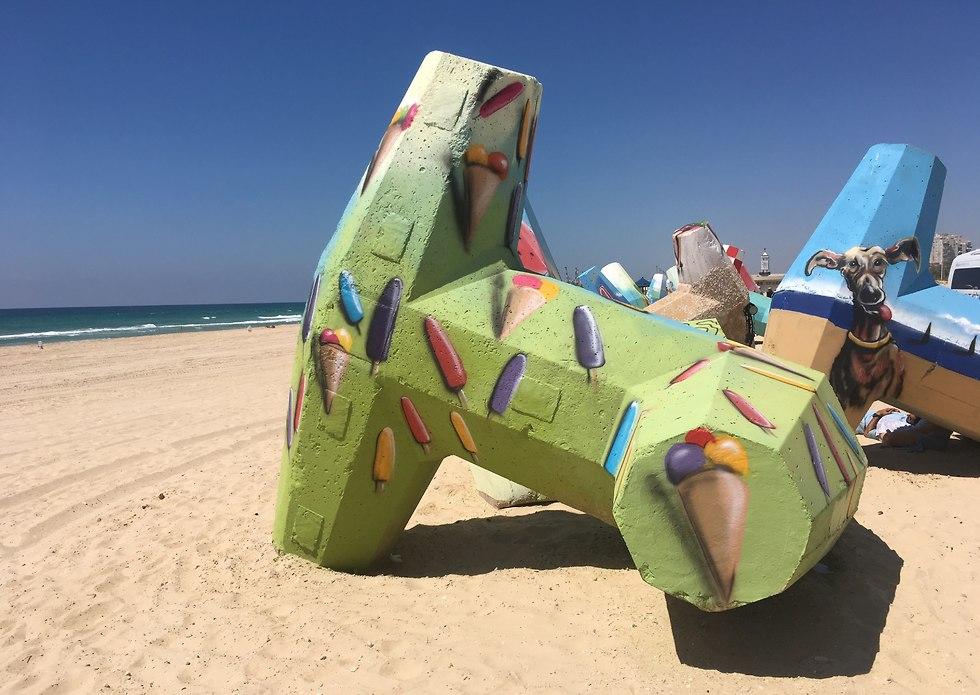 תערוכה אשדוד (צילום: יעל לרנר)