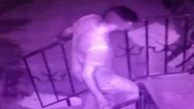 הרוצח אמיר מרמש רצח פאדיה קדיס ()