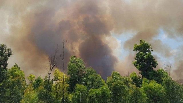 Fire in Kibbutz Zikim