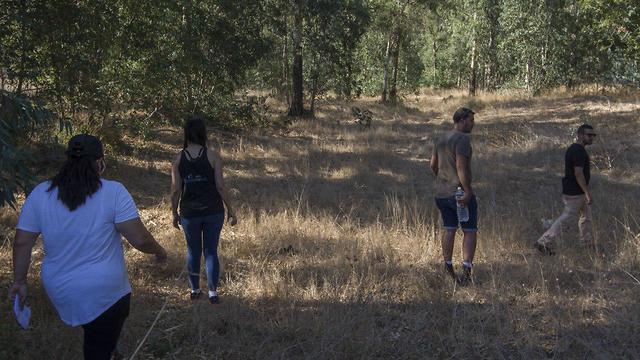 חיפושים אחר אופירה חיים המעדאת ביער אילנות (צילום: עידו ארז)