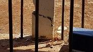 צילום: עיריית טבריה