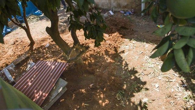חצר הבית בתל מונד בו נמצאה הגופה (צילום: עידו ארז)