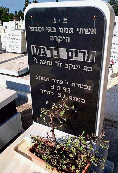 מצבת אמו של רונן ברגמן בבית הקברות בקריית־ביאליק. איך הצילום הגיע לרשת?