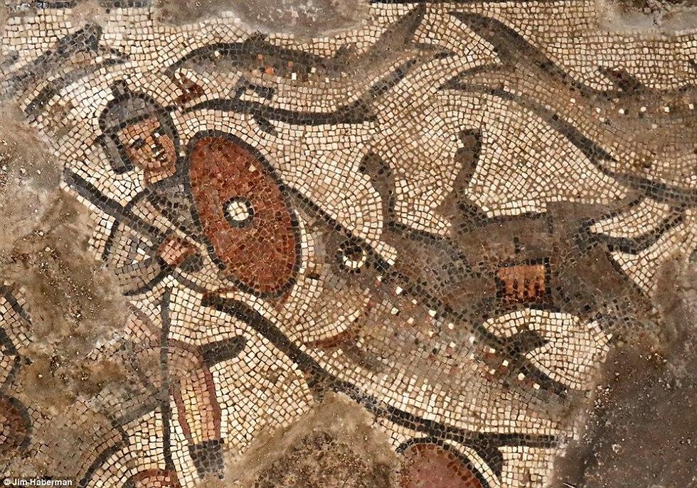חפירות ארכיאולוגיות חוקוק פסיפס (צילום: Jim Haberman)