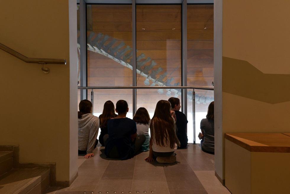 ניצול המעברים בין תערוכות ומפלסים לצורכי תצוגה הוא מרשים (צילום: שי בן אפרים)