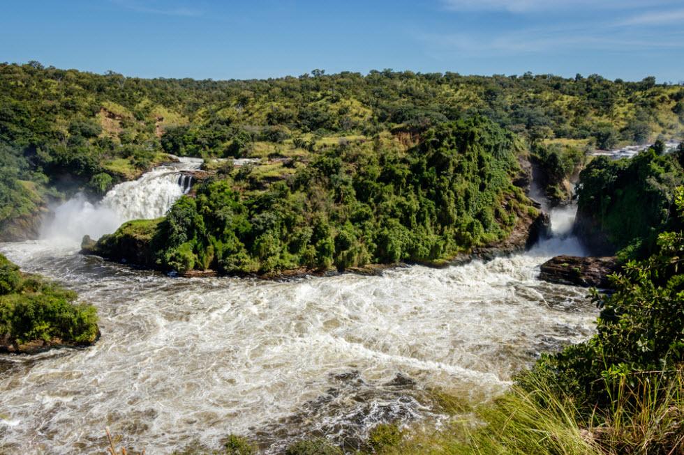 שמורת מורצ'ינסון באוגנדה – אי אפשר לא להתרגש מול עוצמת המפלים  (צילום: shutterstock)