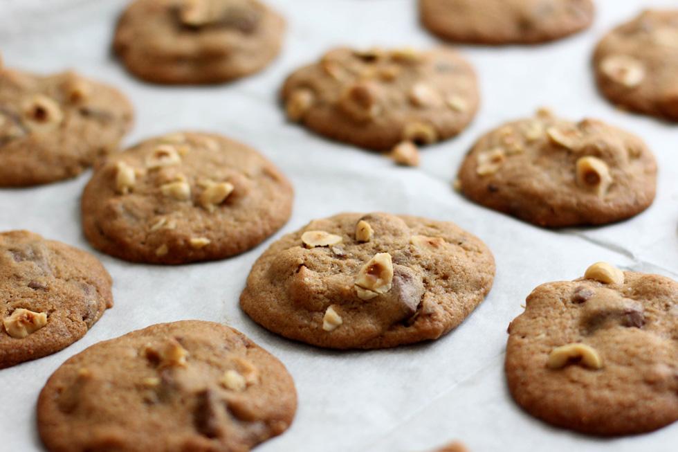 עוגיות שוקולד חלב ואגוזי לוז (צילום: דור משה)