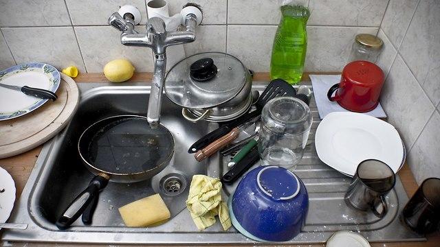כלים (צילום: shutterstock)