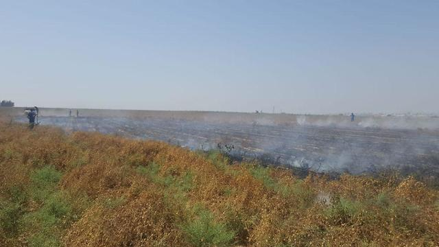 Farmland blackened in south Israel from incendiary kite