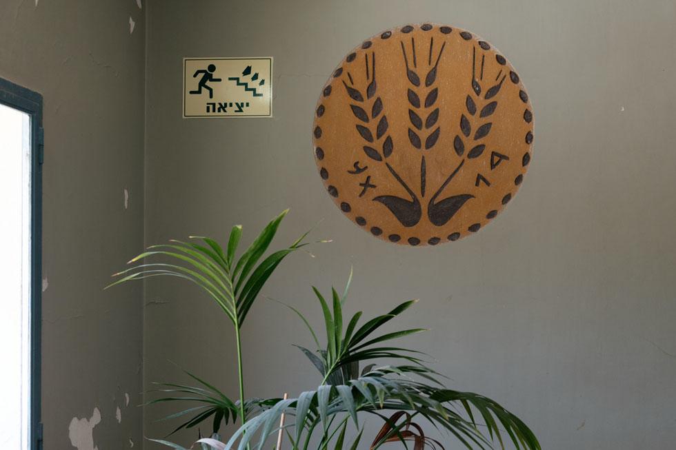 עלי גרוס-יערי עיצבה את סמל דגון ברוח שלושת גבעולי החיטה, המופיעים על מטבע יהודי מתקופת אגריפס. גם המטבע עצמו מוצג כאן, באוסף הארכיאולוגי של המוזיאון (צילום: גדעון לוין)