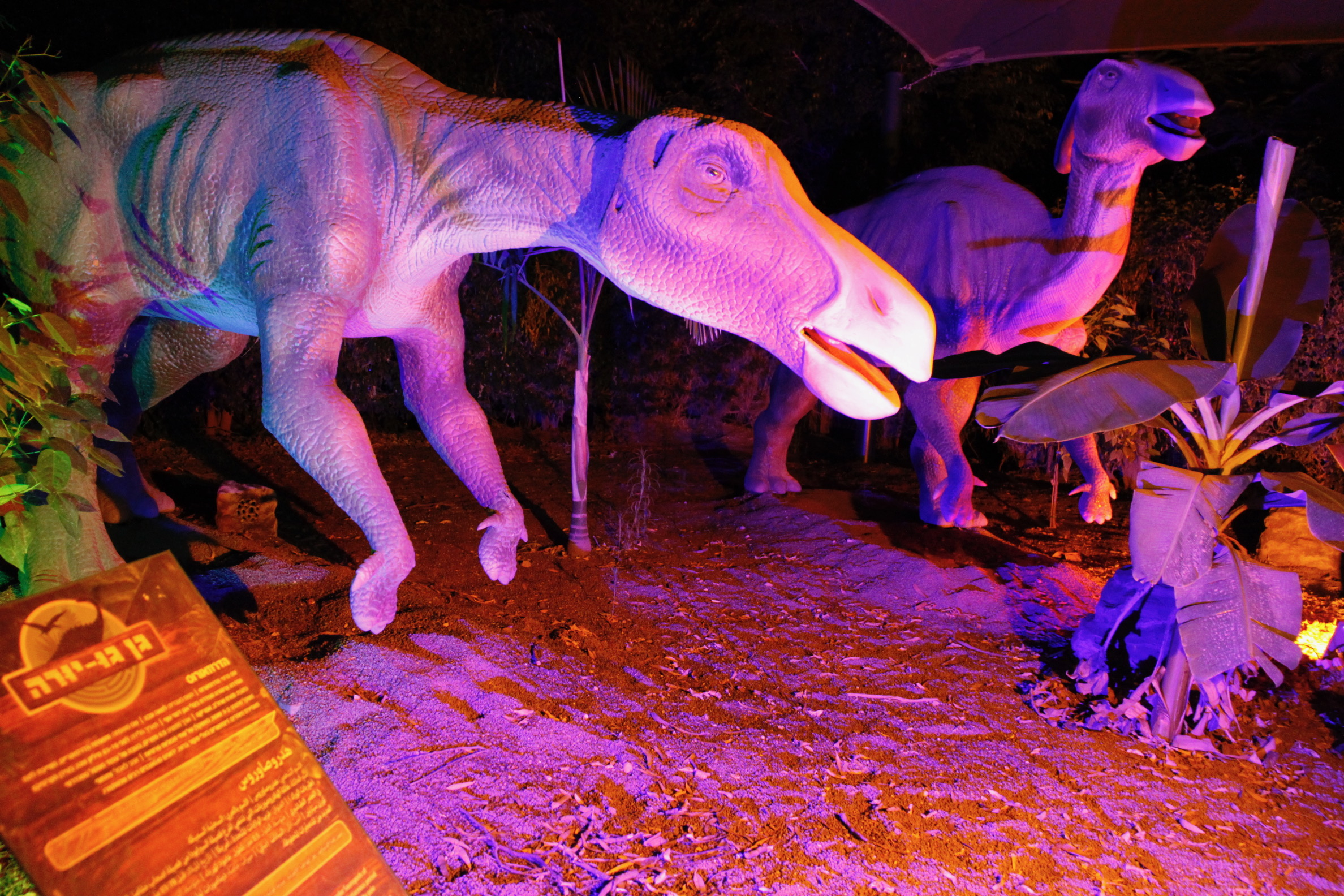 מבוך הדינוזאורים בגן גורו בלילה (צילום: נדב כפיר)