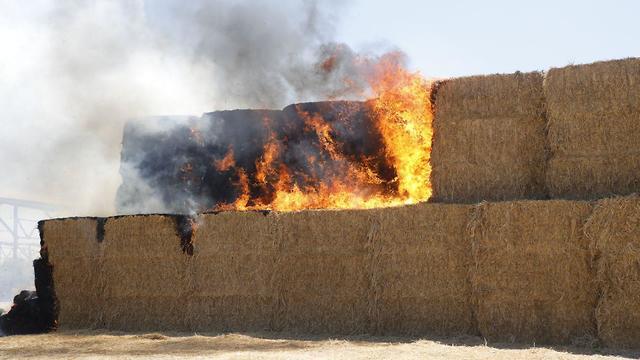 חשד לשריפה מבלון תבערה בנחל עוז (צילום: שאול גולן)