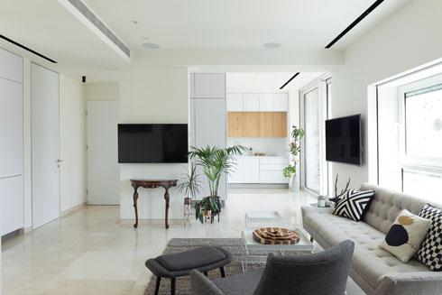 דירה בלי מסדרון. הסלון מול קיר שבמרכזו (משמאל) ארון הבגדים  (צילום: גדעון לוין)