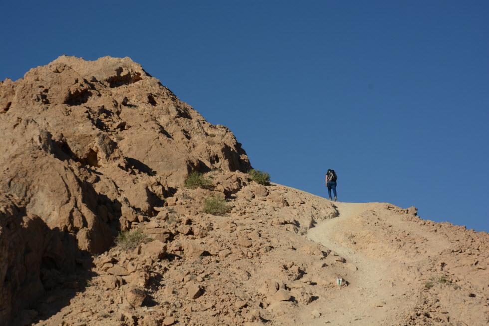אינסוף מסלולי טיול סביב ירוחם (צילום: אבישי אפרת)