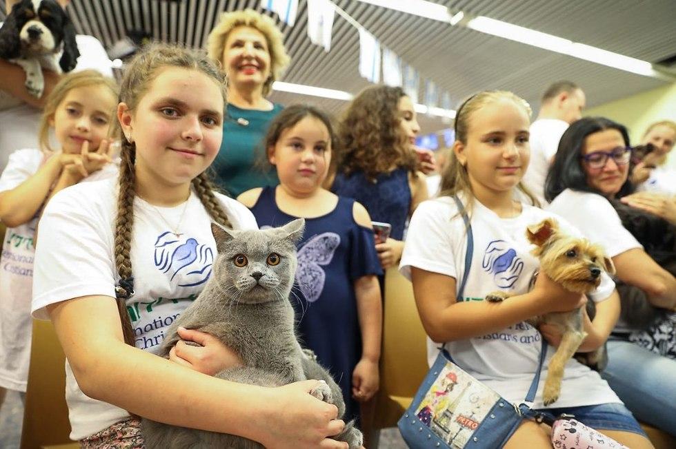 כלבים וחתולים שעלו לארץ (צילום: נועם מוסקוביץ.)