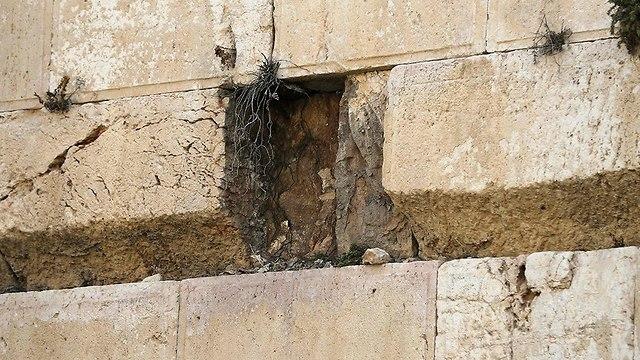 Место выпавшего камня. Фото: AFP