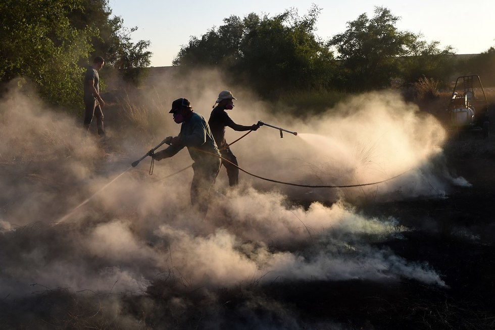 Firefighting teams putting out fires sparked by incendiary balloons       (Photo: Haim Horenstein)