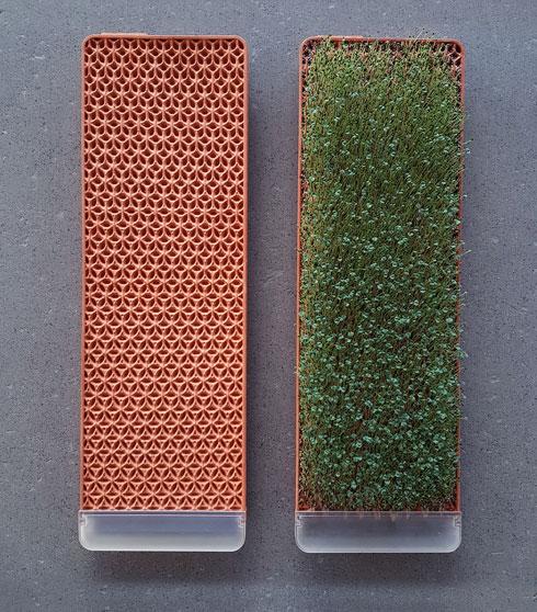 אריחי חרס דקיקים מציעים אפשרות פשוטה וזולה לקיר ירוק (צילום: באדיבות HIT)