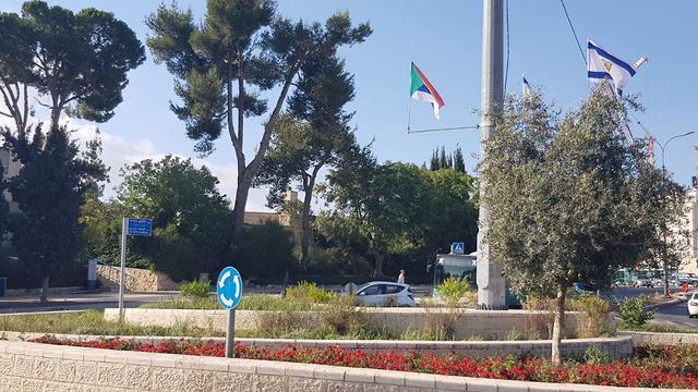 חוק הלאום לאום דרוזים סטודנטים תמיכה דגל ישראל דגל דגלים אוניברסיטה עברית ירושלים ()