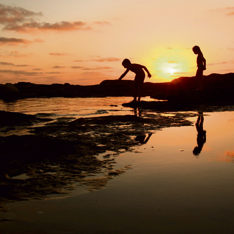חוף אכזיב | צילום: אלעד גרשגורן