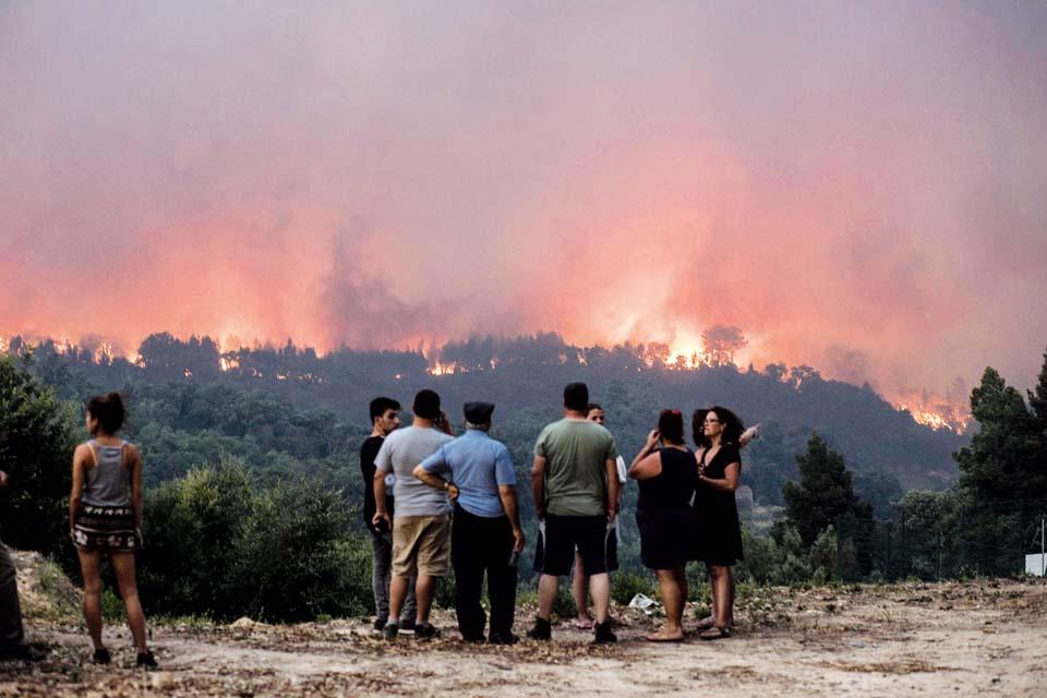 Аномальная жара стала причиной сильнейших пожаров в Португалии. Фото: AP