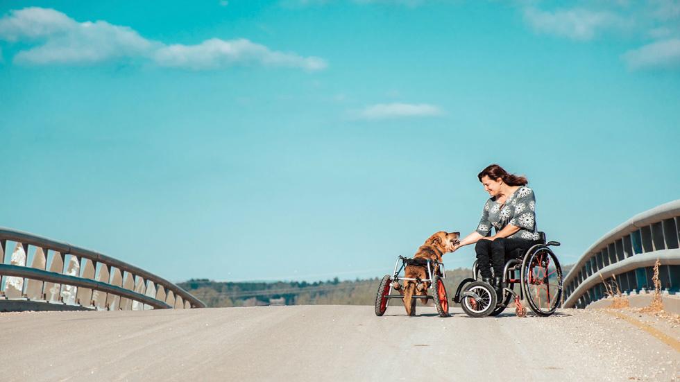 לא הסכימה להרדים את הכלב האהוב שלה, וקנתה גם לו כיסא גלגלים