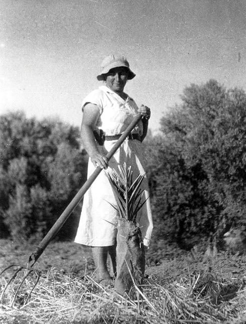 """חיה ישראלי. כונתה """"מלכת הדבורים"""" (צילום: ארכיון עין השופט)"""