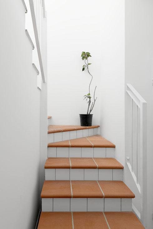 וכך הוא נראה במדרגות (צילום: גדעון לוין)