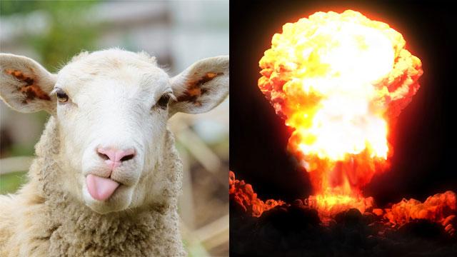 פיצוץ גרעיני (צילום: shutterstock)