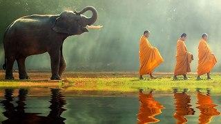 תאילנד (צילום: שאטרסטוק)