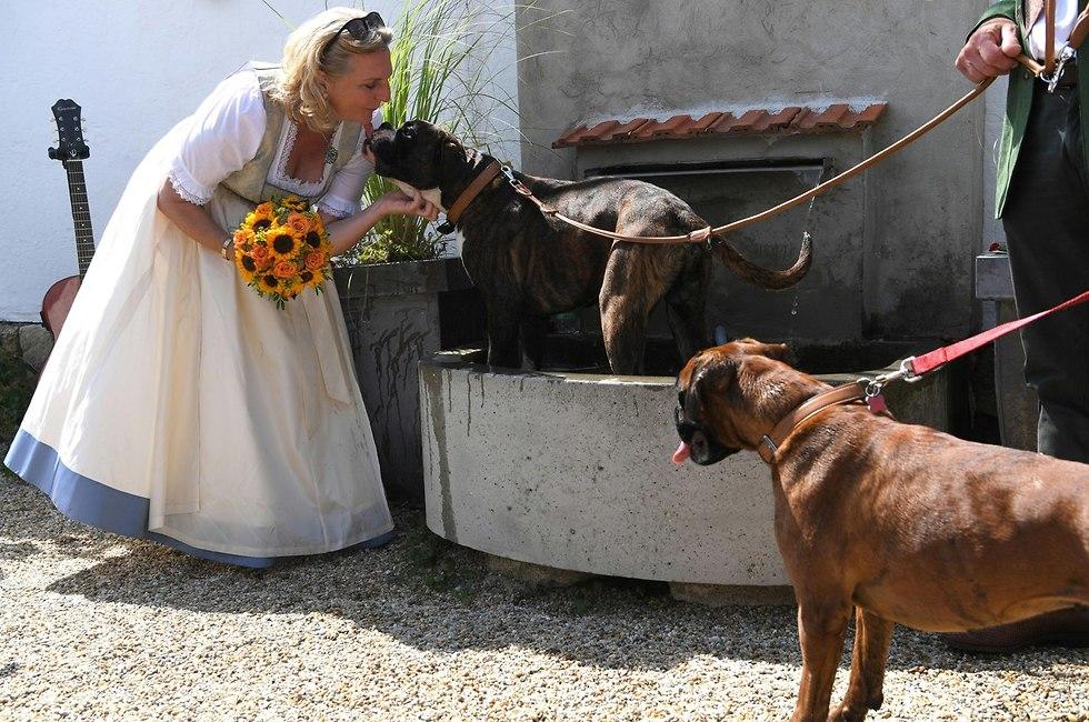 ה חתונה של שרת החוץ של אוסטריה קרין קנייסל (צילום: EPA )
