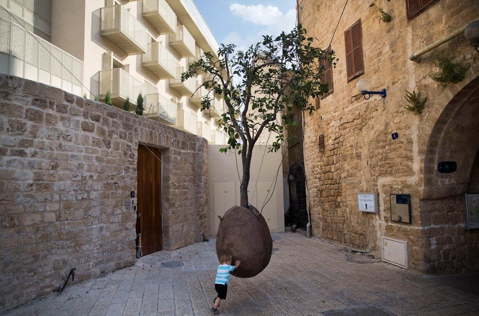 Suspended Orange Tree by Ran Morin