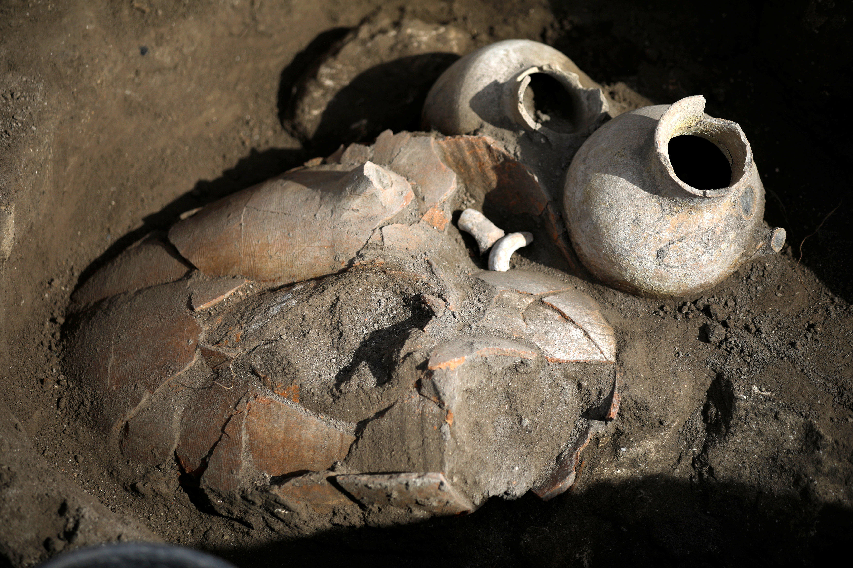 Megiddo excavation (Photo: Reuters)