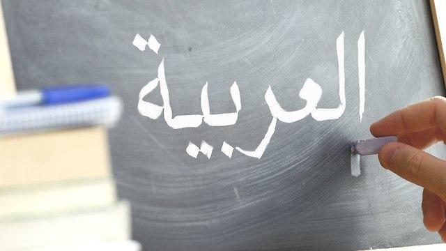 פרויקט לומדים לפי הספר כמה תלמידים מגזר יהודי ניגשים בגרות מקצוע ערבית (צילום: shutterstock)