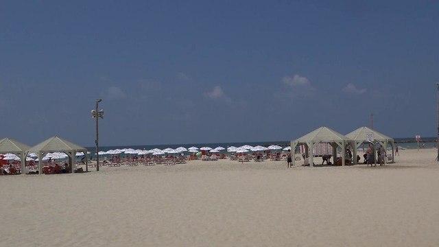 Sexual harassment is common at Tel Aviv's beaches  (Photo: Lihy Krupnik)