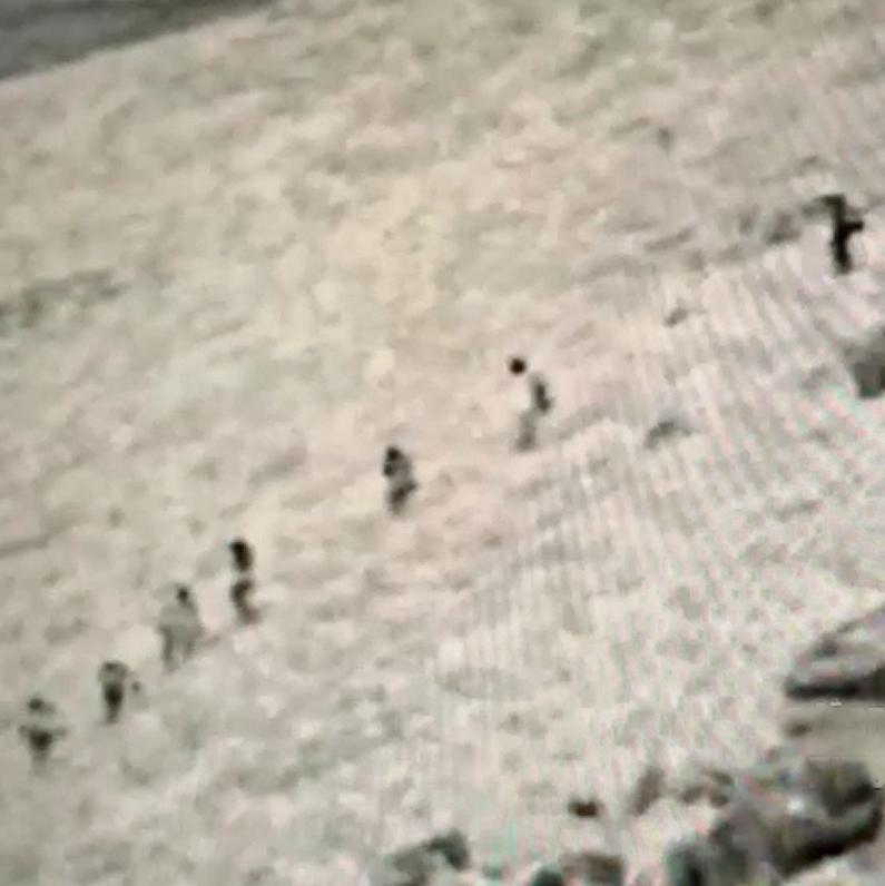 """חוליית דאעש סמוך לגבול הגולן, רגע לפני שחוסלה. ר': """"אני אוהבת לקרוא אחר כך בעיתון על אירוע שהשתתפתי בו"""""""