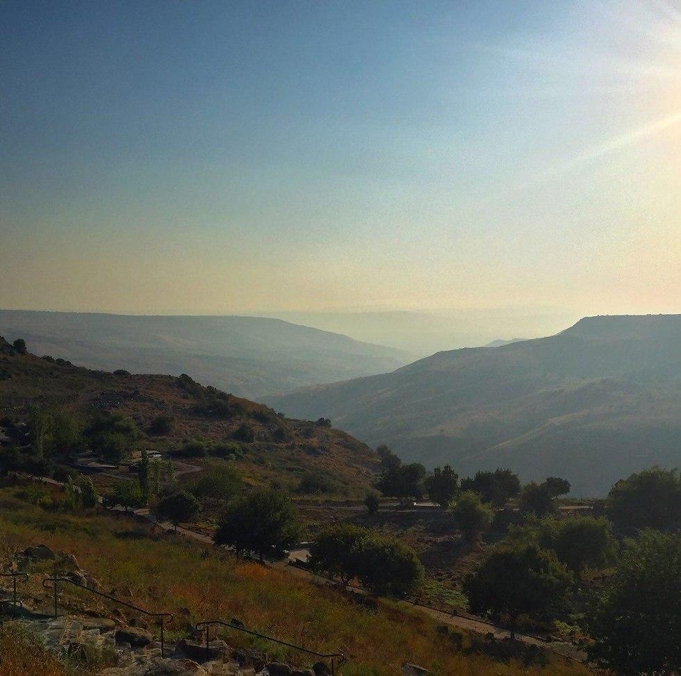 הנוף מהאתר (צילום: שירה רז פריינד)